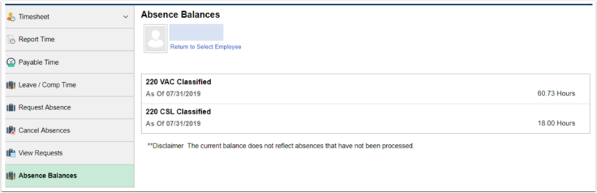 absence balance details for employee