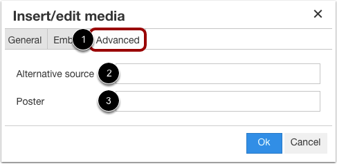 Insert Using Advanced Options