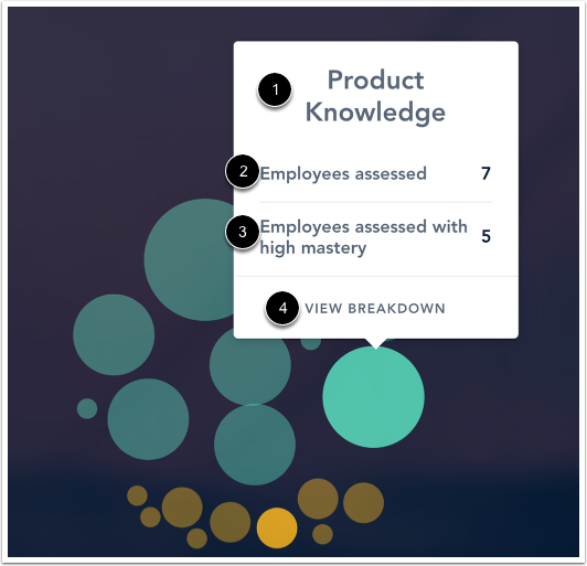 View Skill Mastery Data