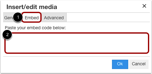 Insert Using Embed Code