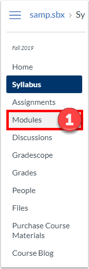 "From the Course Navigation, click ""Modules""."