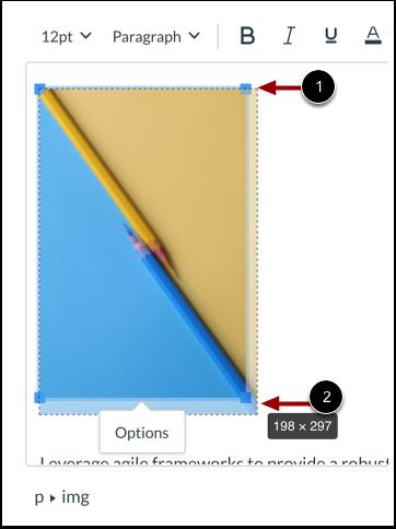 Manually Adjust Image Size