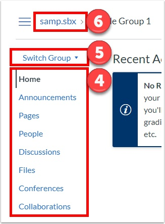 View the group tools, switch between groups, and return to the course site
