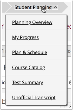 student planning menu