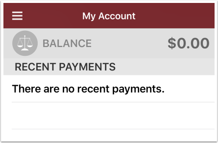 account payments screen