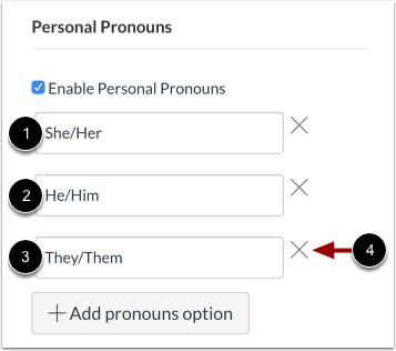 View Pronoun Options