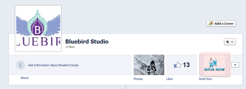 TEST - Refresh your Facebook page (hold down CTRL and press F5). Click on the BookNow button again
