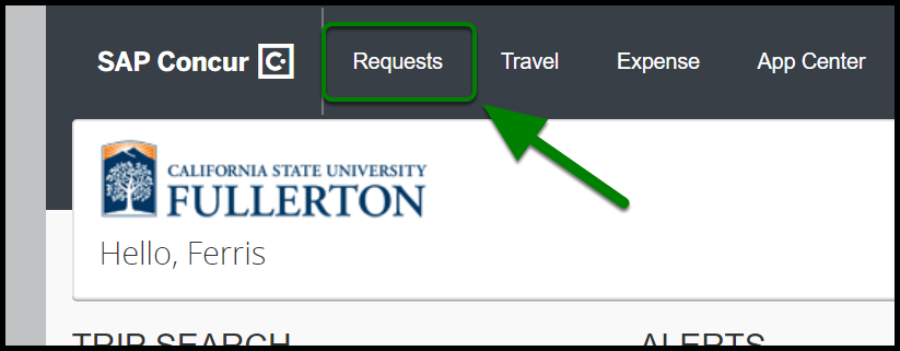 Green box and arrow indicating to select Request tab.