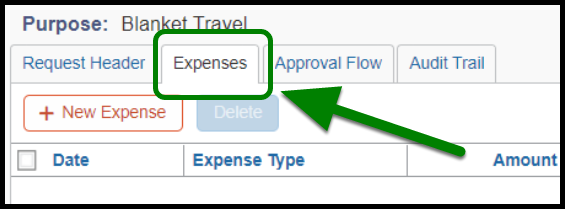 Expenses tab in the Request. The Expenses tab is highlighted, and there is a green arrow pointing towards it.