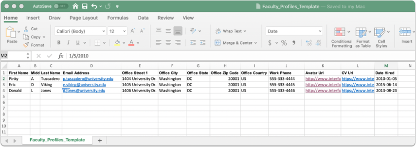 Faculty profiles Template (1)