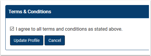 Terms and conditions section detail