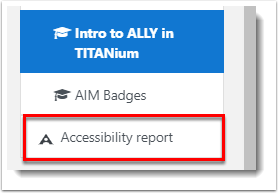 Accessibility report is selected