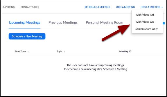 My Meetings - Zoom