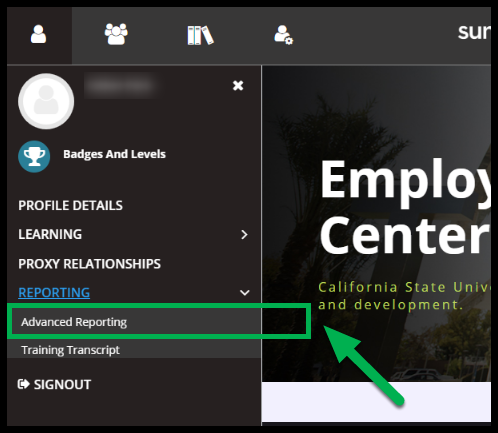 Arrow pointing to Advanced Reporting.