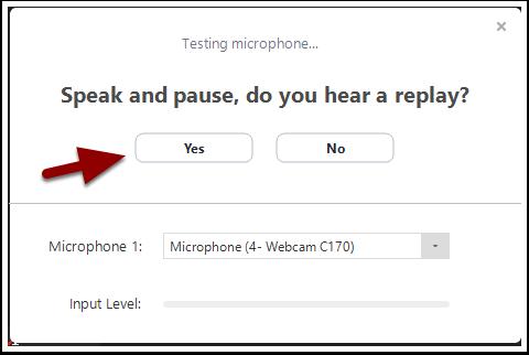 microphone test window