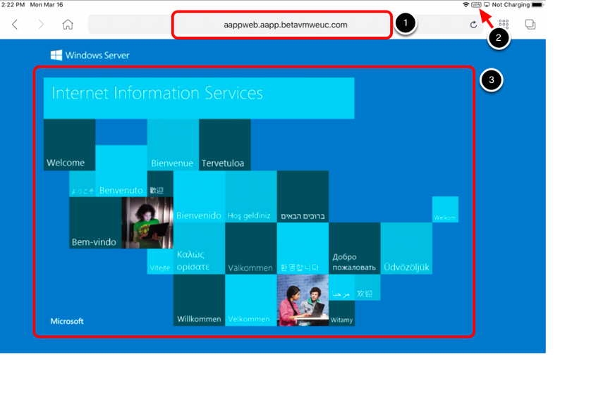 Access the Internal Website with VMware Browser.