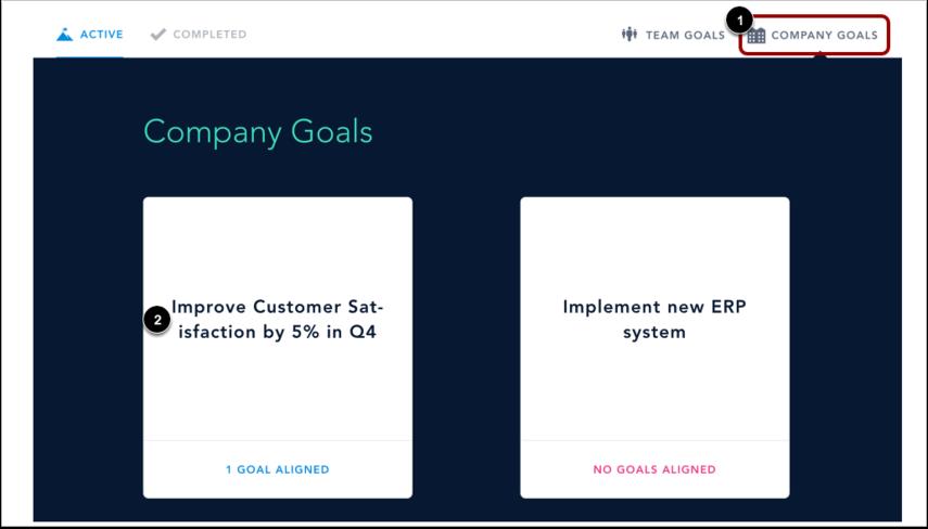 View Company Goals