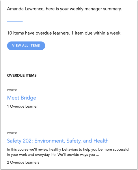 View Bridge Manager Summary