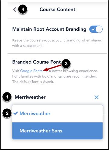 Customize Course Font