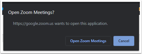 Login with Google - Zoom - Google Chrome