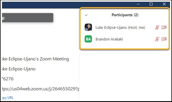 Zoom Meeting ID: 264-655-029