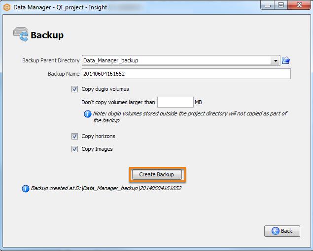 Data Manager manual backup