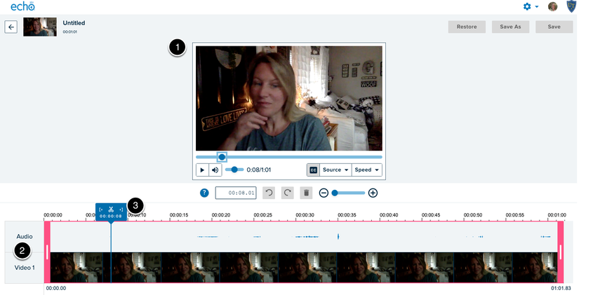 screen shot of the Echo video editor with numbered items to indicate features of the interface