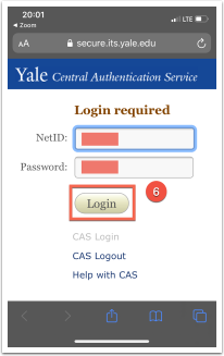 CAS Authentication