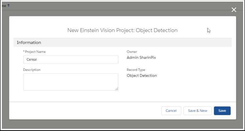 new einstein vision project