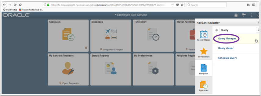 Query Manager in Navigator Image
