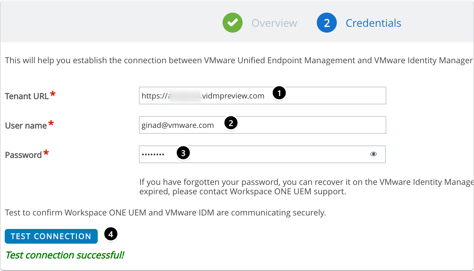 Configure details for Workspace ONE Access (VMware Identity Manager)