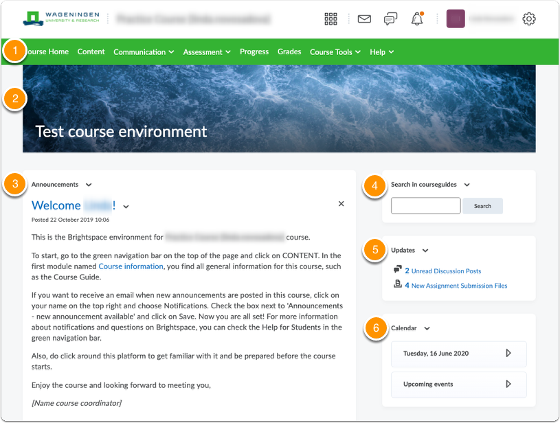 Brightspace course homepage - overview