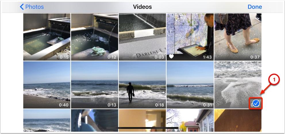 https://media.screensteps.com/image_assets/assets/003/529/123/original/8908659d-2498-4a67-8852-b1817130e535.jpg