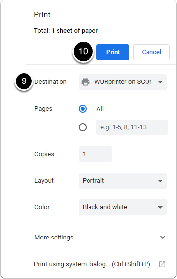 Print view with options on printer, pages, layout, colour