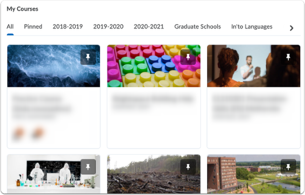 WUR Brightspace homepage - my courses