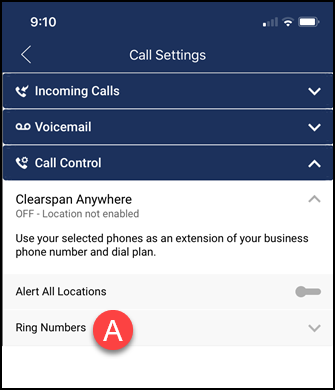clearspan anywhere options