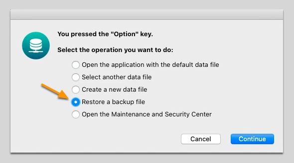 Restore the Backup File