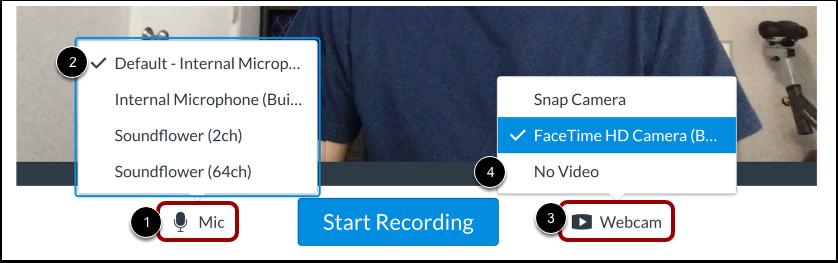 Seleccionar las opciones de micrófono y cámara web