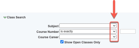 Arrow pointing to Class Search carets