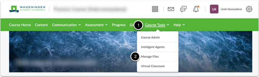 Click Course Tools, then click Manage Files