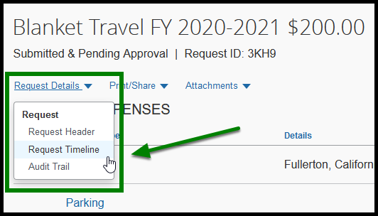 Request Details tabs. There is a request header, request timeline, and audit trail tabs. There is a green square highlighting the request details.