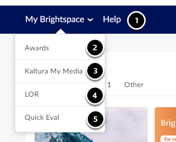 How do I navigate through the Brightspace Homepage? | Instructors - English | Support site - Brightspace - Google Chrome