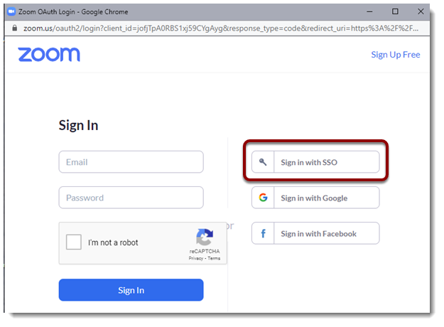 Sign in with SSO button selected