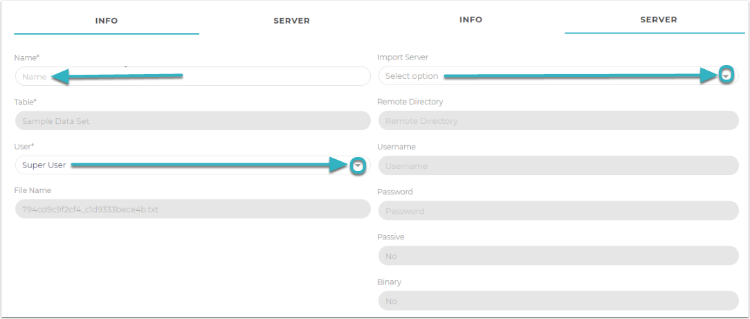 Fill out the Name, User, and what Import Server you will be using.
