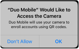 allow camera access