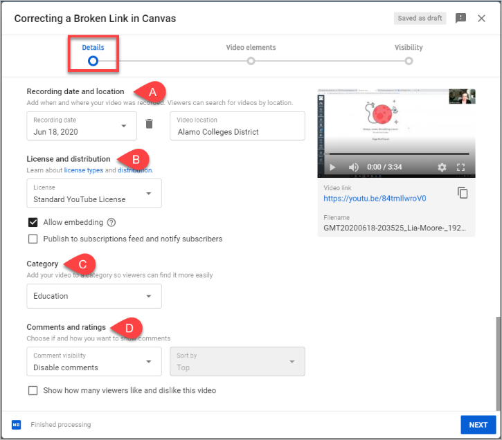 Options from the YouTube video advanced settings section