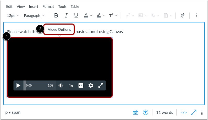 Open Video Options