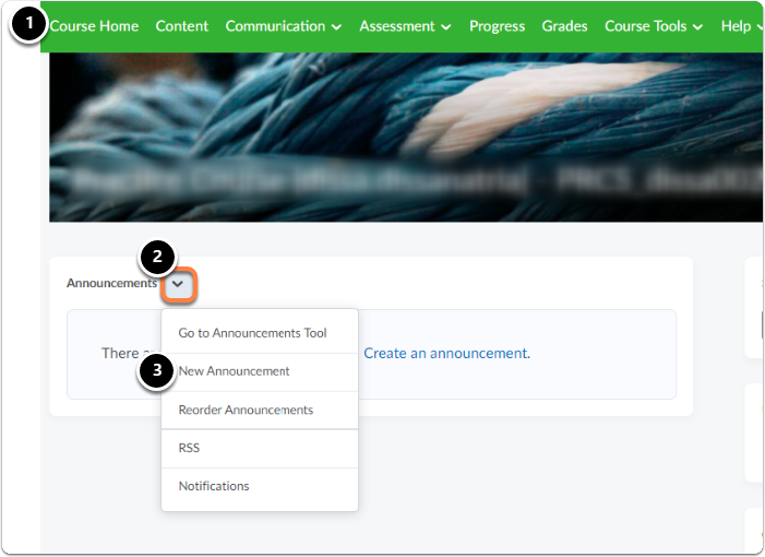Click on the downward arrow next to Announcements, then click on Go to Announcements Tool