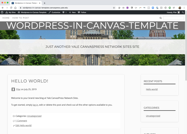 WordPress in Canvas Screenshot
