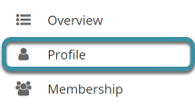 Select Profile from the Home Tool Menu
